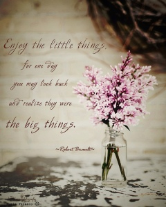 enjoy-the-little-things-for-one-day-you-may-look-back-and-realize-they-were-the-big-things-15