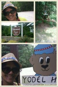 blackforestcampground